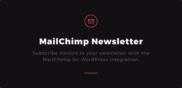 MailChimp Newsletter: Subscribe visitors to your newsletter with the MailChimp for WordPress integration.